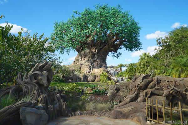 a Árvore da Vida no Animal Kingdom esconde uma atração muito divertida sob suas raízes!
