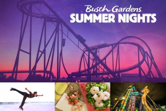 Disney Point Busch Gardens Summer Nights