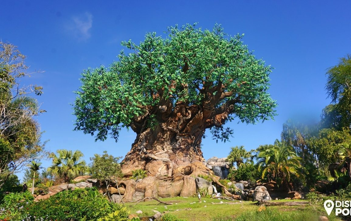 Disney Point Roteiro Grátis Animal Kingdom Arvore da Vida