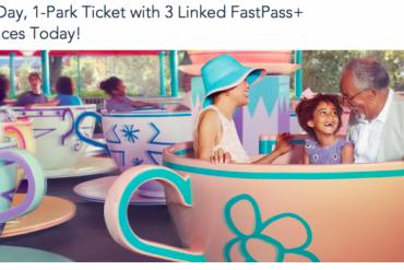 Disney Point Venda Ingresso 1 dia Fastpass marcado