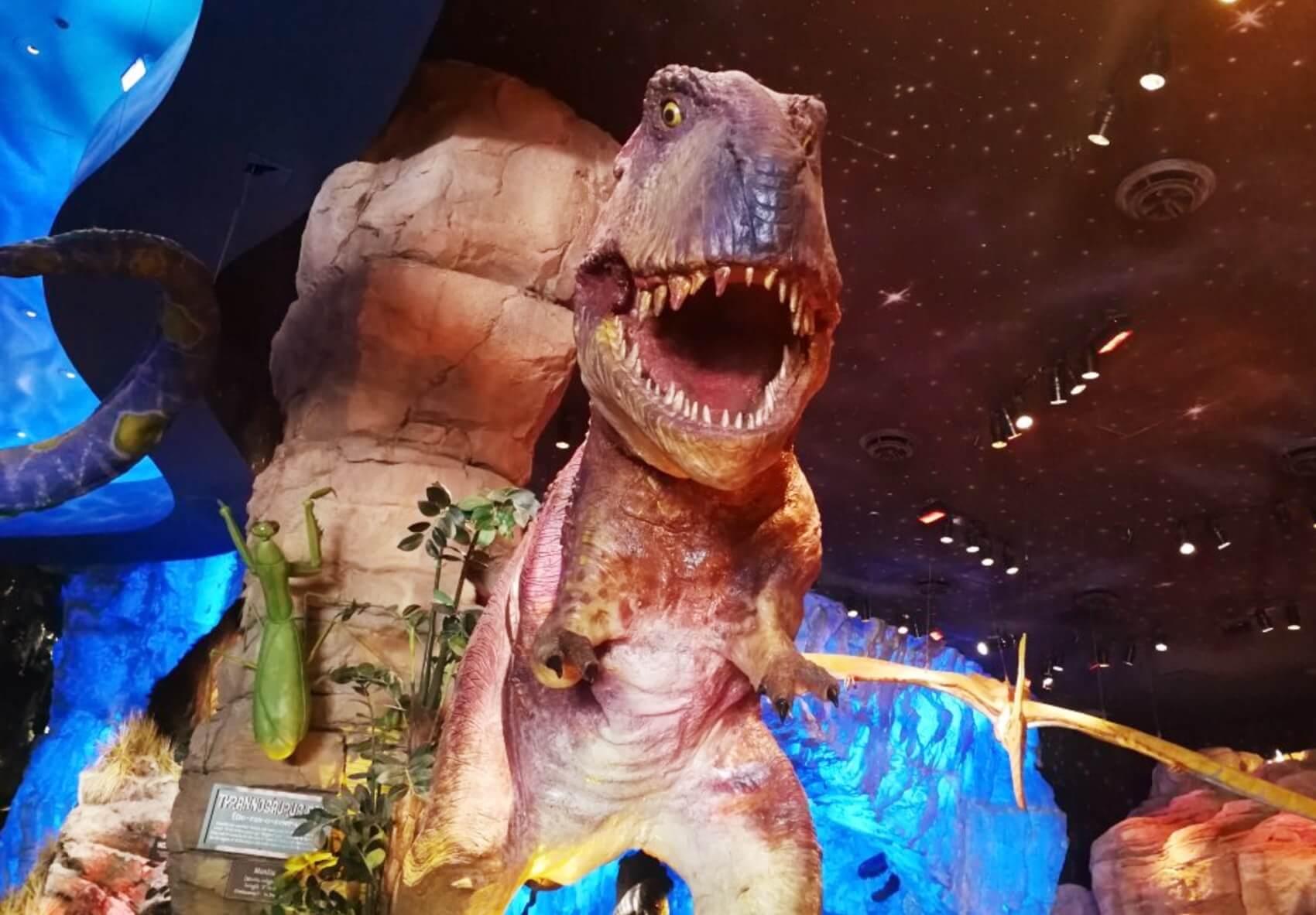 Disney Point T-Rex Dinossauros Springs Tiranossauro-min