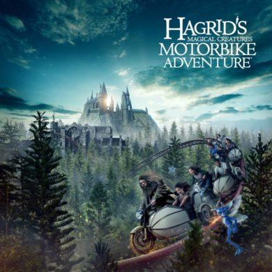 Disney Point Hagrid Adventure Harry Potter