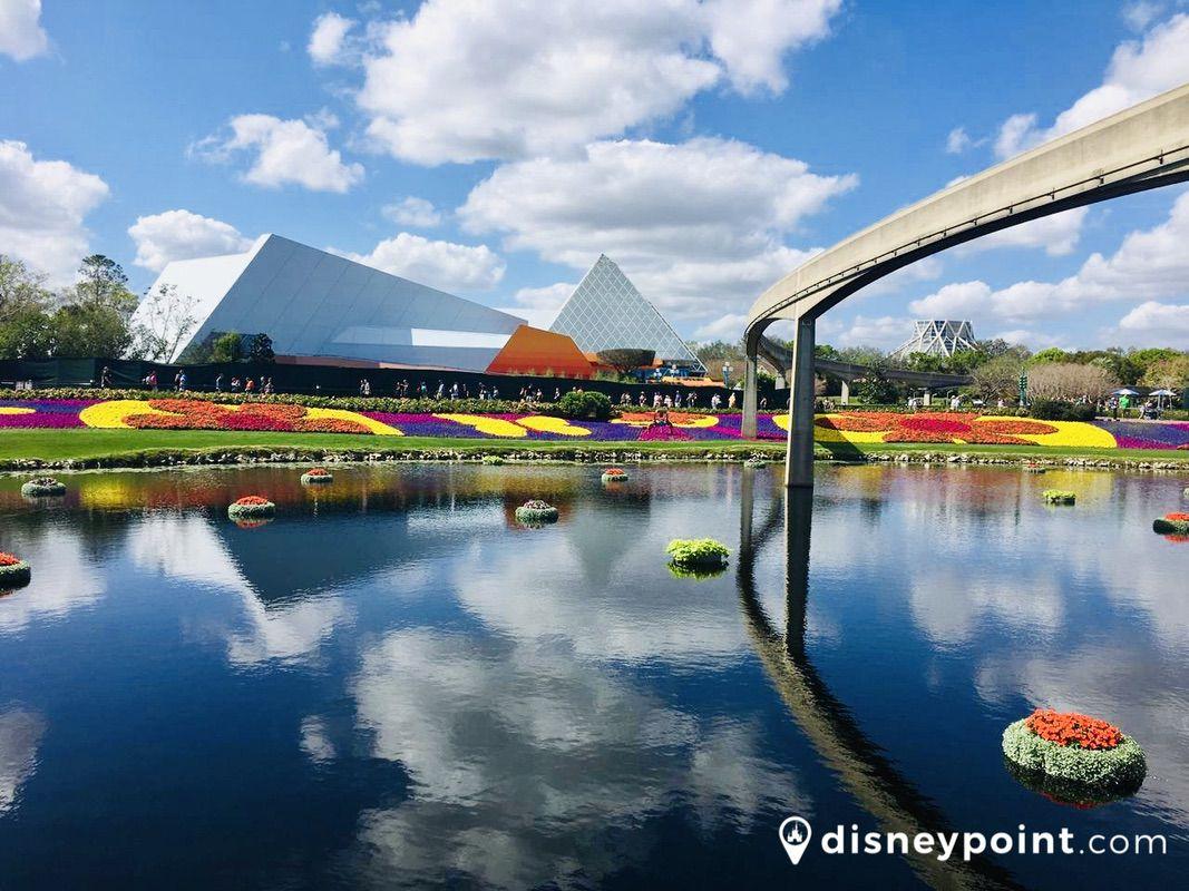 Disney Point Epcot Flower Garden flores
